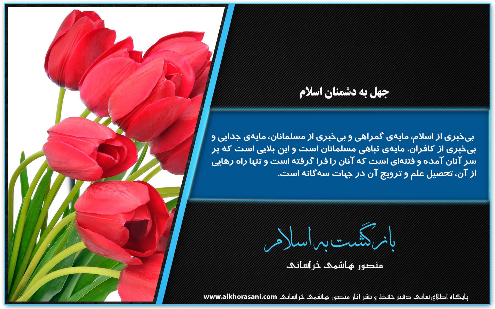جهل به دشمنان اسلام (3)