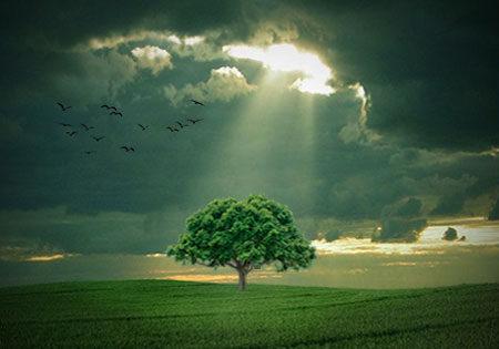 خواهی نشوی رسوا، همرنگ «حقیقت» شو